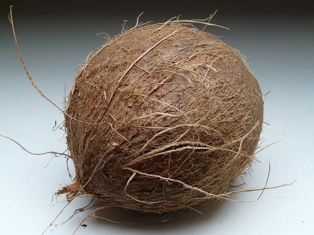coconut-60391_640