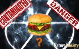 biohazard_radiation_toxic_danger_contam_hamburger_logo-263x164